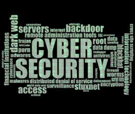 Quels sont les différents piratages possibles sur un box internet ?